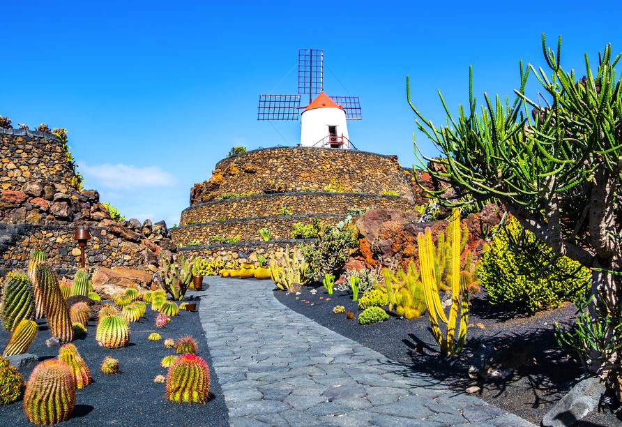 Der Jardin de Cactus, zu Deutsch: Kakteengarten, empfängt Sie im Nordosten der Insel mit einer architektonischen Gestaltungskunst, die Sie begeistern wird.