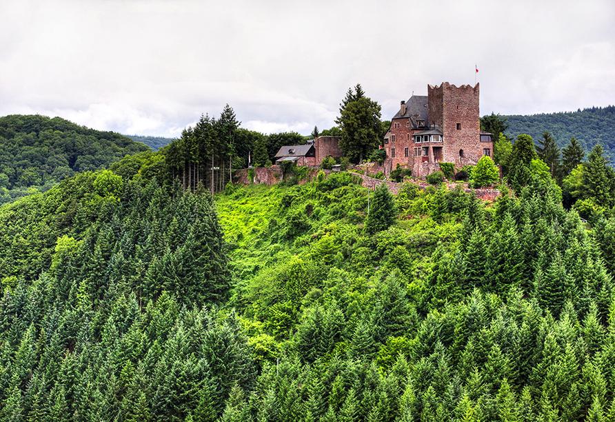 Die Burg Arras in Alf liegt zu Fuß nur rund 3 km von Ihrem Hotel entfernt.