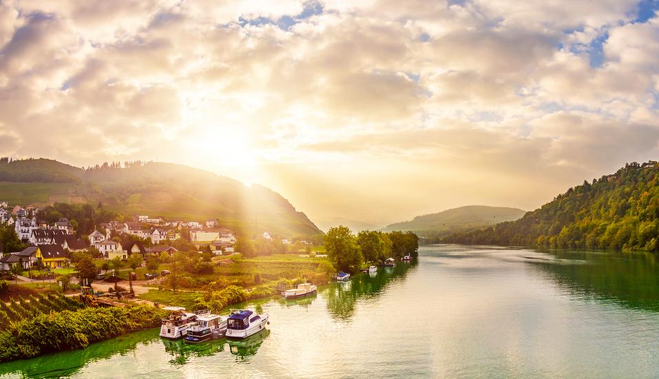 Freuen Sie sich auf die faszinierende Mosellandschaft mit Wäldern, Tälern, Weinbergen und zahlreichen Burgen.