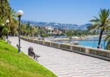 Die Blumenstadt Sanremo lädt mit einer wunderschönen Promenade zu einem Spaziergang ein.