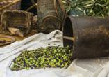 In Imperia besuchen Sie ein Museum zur Geschichte der Olivenbäume und -ölproduktion.