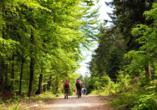Wandern Sie durch die schönen Wälder.