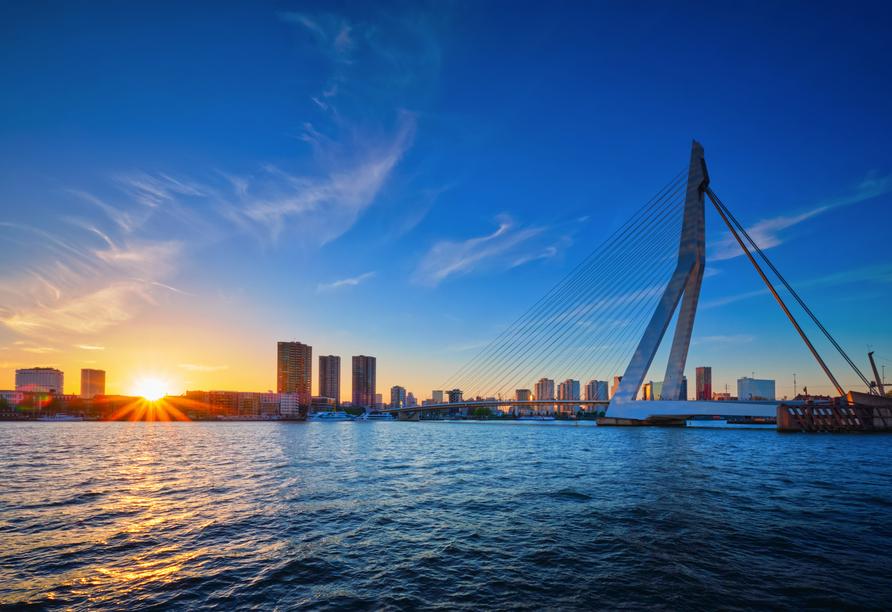 MS Antonia ab/bis Köln, Rotterdam