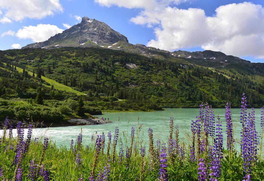 Alpenresort Fluchthorn, Stausee Kops