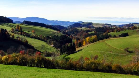 Genießen Sie wunderschöne Naturlandschaften.