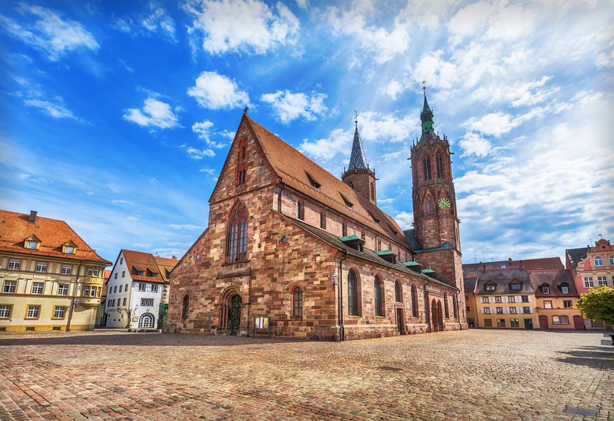 Blick auf das Villinger Münster