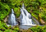Bestaunen Sie den Triberger Wasserfall, Deutschlands höchsten Wasserfall.