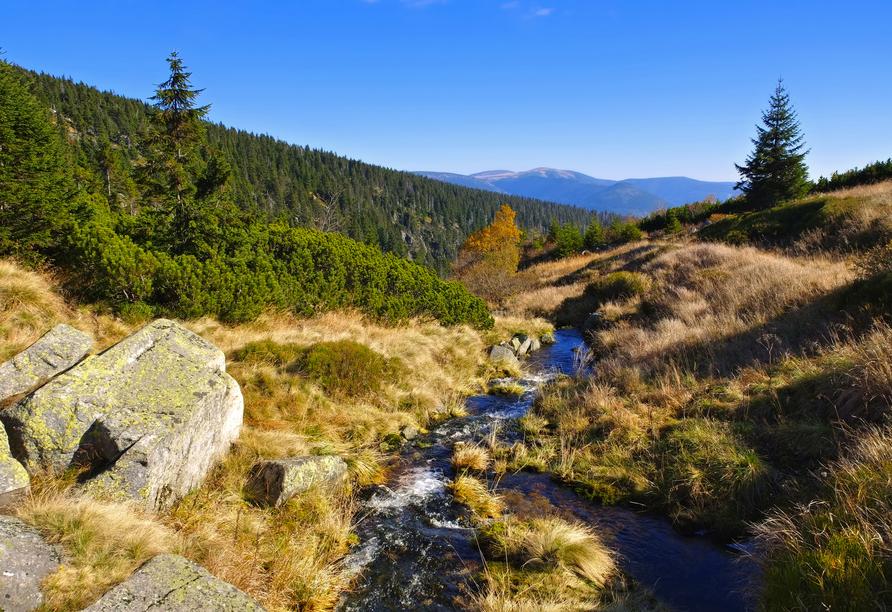 Der Elbfall fließt von der Elbquelle das Riesengebirge hinunter.