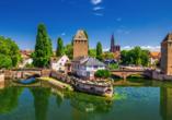 DCS Amethyst Classic, Straßburg