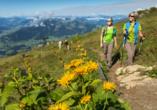 Das Kitzbüheler Horn ist beliebt bei Wanderfreunden.