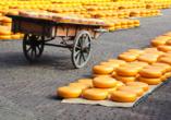 De Holland, Käsemarkt Alkmaar