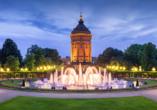 Der Friedrichsplatz mit dem Wasserturm liegt nur wenige Meter von Ihrem Hotel entfernt.