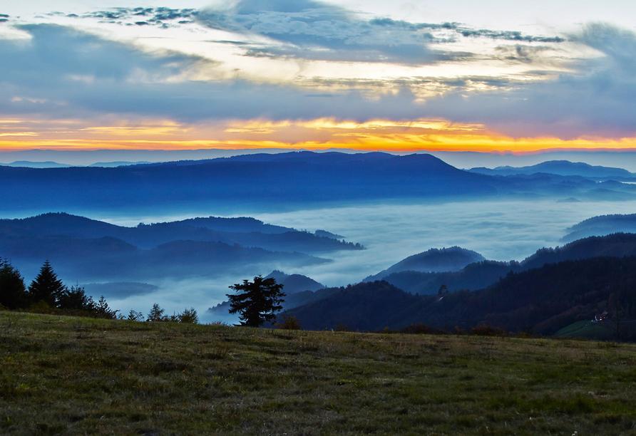 Kommen Sie in der traumhaften Naturlandschaft rund um Ihr Urlaubshotel zur Ruhe.