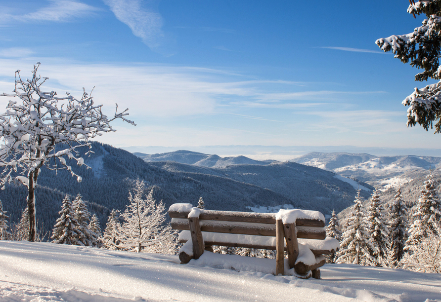Freuen Sie sich auf winterliche Tage im Schwarzwald!