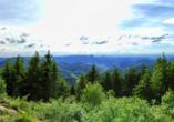 In der malerischen Natur des Schwarzwalds kommen Sie garantiert zur Ruhe.