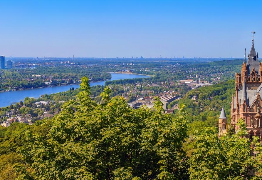 Der Drachenfels über dem Rheintal