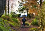 Die Wanderwege im Harz sind bei Jung und Alt äußerst beliebt.
