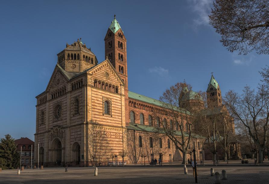MS Crucedream, Speyer