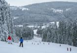 Predigtstuhl Resort in St. Englmar im Bayerischen Wald, Pröller Skidreieck