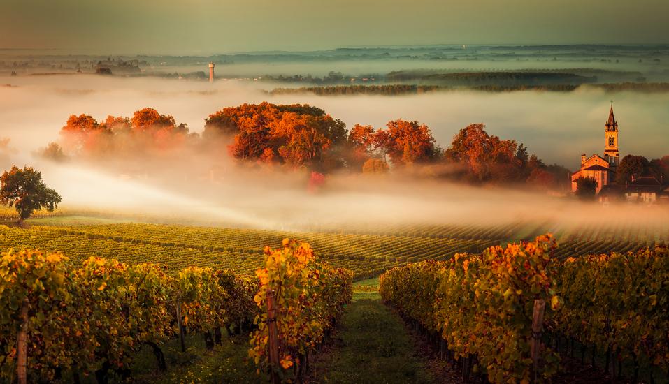 Rundreise Frankreich, Landschaft Bordeaux