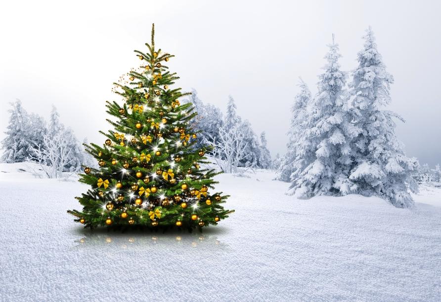 First Mountain Hotel Zillertal, Weihnachten