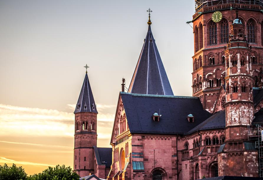 AC Hotel Mainz, Dom