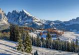 Hotel Stella Alpina in Bellamonte, Italien, Winterlandschaft