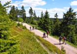 Wandern im Thüringer Wald - ein unvergleichliches Naturerlebnis!