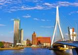 DCS Amethyst Classic, Rotterdam