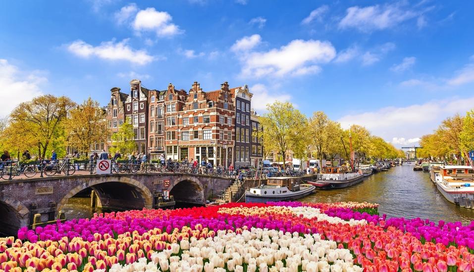 DCS Amethyst Classic, Amsterdam